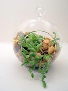 Terrarium ONLY, DIY, Hanging Glass, Hostess gift, No PLANTS