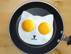 Мошенники собрали 73 тыс. $ на форму для яичницы в виде кота