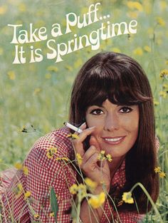 Ah spring time in the meadow, All that lovely spring fresh Air, and it's free and healthy too. Now why on earth would anyone want to  inhale poisonous smoke instead !!