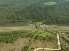 Ecoduct-Wildlife bridge in the Netherlands.