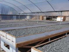 Garderning Hydroponic Launching Your Own Aquaponics Business – Start Small and Grow Large - Article One© - Sweet Aquaponics Greenhouse, Aquaponics Fish, Fish Farming, Hydroponics System, Hydroponic Gardening, Greenhouse Ideas, Indoor Aquaponics, Hydroponic Growing, Backyard Greenhouse