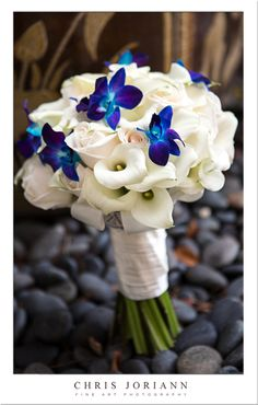 I actually kind of love the striking small blue flowers w/ the mostly white bouquet! @Katie Hrubec Zamora