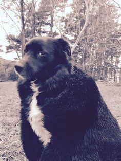 Ruben (aka John Doggy Snow)