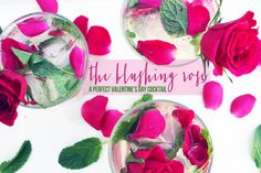 The Blushing Rose: A Perfect Valentine's Day Cocktail. It is the perfect festive mix!