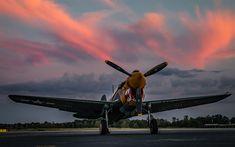 Download wallpapers P-40K Warhawk, Aleutian Tiger, 4k, old aircraft, World War II, US fighter, Curtiss P-40 Warhawk