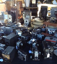 vintage cameras-  You will always find a vintage camera or two in Aqua Di Vita, I love their style like pieces of art!