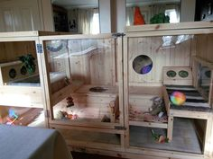 New indoor home all finished setting up. :) - Page 3 - Rabbits United Forum Rabbit Life, Rabbit Run, Pet Rabbit, Indoor Rabbit House, House Rabbit, Bunny Cages, Rabbit Cages, Chinchilla, Rabbit Habitat
