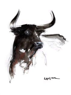 Toro aquarelle anne larose art pinterest stier for Raumgestaltung studium