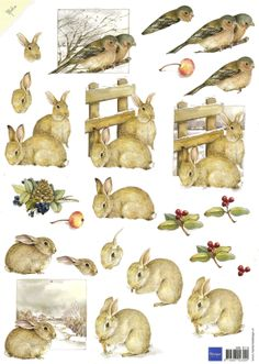 Usabit com drive angry 2017 dvdrip xvid exvid Christmas Pictures, Christmas Art, Christmas Sheets, 3d Cards, Paper Cards, Image 3d, Paper Animals, Rabbit Art, China Painting