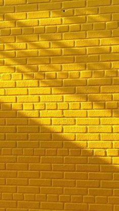 Yellow Flowers Yellow Aesthetic Yellowaesthetic Yellow