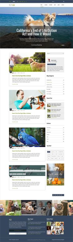 Pet town is a clean, stylish and modern trend #PSD template for #animal #blog and #shop websites download now➩  https://themeforest.net/item/pet-town-psd-template/19068836?ref=Datasata