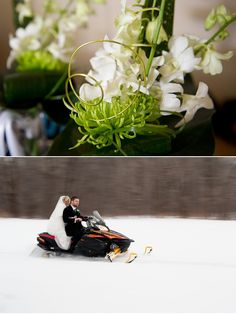Ignore the snow-mobiling couple...I just like the flowers