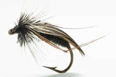 The world's best trout fly