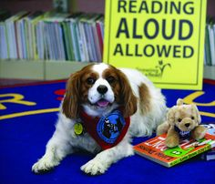 Norman West Therapy Dogs at Pioneer Library System