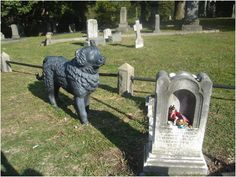 Dog guards child grave, Hollywood Cemetery, Richmond, VA