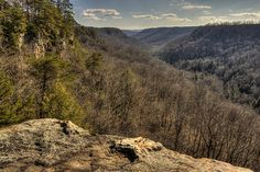 Fiery Gizzard Trail in South Cumberland Recreation Area. 12.5 mile trail with this gorgeous view and a waterfall, only a little over an hour's drive southeast of Nashville. Werner Point Overlook detail, Fiery Gizzard Trail, Grundy Co, TN by Chuck Sutherland, via Flickr.