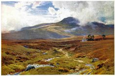 Scottish Moors Gold and Green