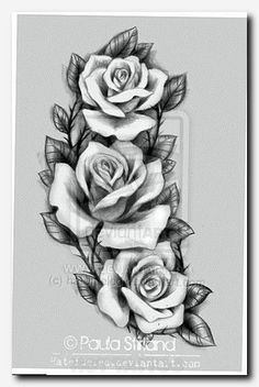 #rosetattoo #tattoo koi fish foot tattoo, girl sexy tattoo, tattoo ink paper, female tattoo arm, royal edinburgh military tattoo 2017 tickets, flower memorial tattoos, tattoo designs on hand, tattoo design sketches, butterfly tribal tattoo designs, tiny tattoos women, pictures for tattoos, free online tattoo designer, unique places to get tattoos, how are tattoos done, small simple hand tattoos, cross tattoo add ons