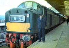 Electric Locomotive, Diesel Locomotive, Train Room, British Rail, Train Engines, Windermere, Photo Search, Buses, North West