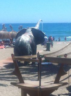 Doccia elefantino