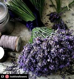 Take time to smell the lavender today! Happy Wednesday!  thanks @lookforaflowers for inspiring us.  #flowers #flower #petal #petals #nature #beautiful #love #pretty