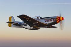 North American  P-51D Mustang    Swamp Fox       Jim Raeder