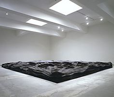In October 2008, the Institute of Contemporary Art in Boston opened an exhibition spanning a decade of Tara Donovan's work. Here, she is interviewed by Lawrence Weschler.