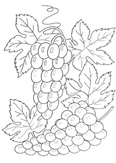Worksheet. fruit basket  DIBUJOS  Pinterest  Cesto Fruta y Bordado