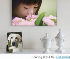 Photo Panel it up!--#ilovesnapfish