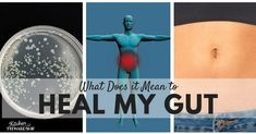 What does it mean to heal my gut? Solutions for the root cause of a host of ailments including allergies, eczema and fatigue. Gut Healing Diet, Homeopathic Medicine, Leaky Gut, Autoimmune Disease, Gut Health, Burn Calories, Allergies, Weight Loss, Fermentation Recipes