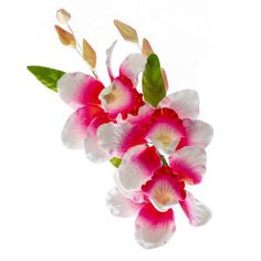 Find this box of Orchid Butterfly 6 inch Sprays @ McCall's! These beautiful handcrafted flowers make a wonderful addition to any cake design! Gum Paste Flowers, Food Coloring, Flower Making, Sprays, Cake Designs, Orchids, Icing, Cake Decorating, Vibrant Colors