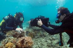 "Shooting an ""Underwater classroom lesson""  The #Catlin #Seaview Survey - www.catlinseaviewsurvey.com/"