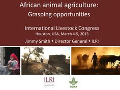 African animal agriculture: Grasping opportunities by ILRI via slideshare, 4-5 Mar 2015