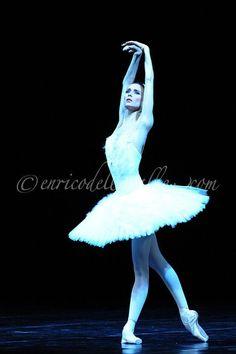 "<<Svetlana Zakharova (Bolshoi Ballet) in ""The Dying Swan"" #  Photo  © Enrico Della Valle>>"