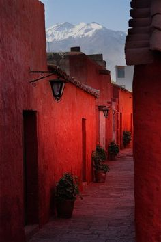 Hues of Red