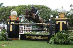 Kent Farrington and Blue Angel Trump Show Jumping Field at Mar-a-Lago | Rate My Horse PRO