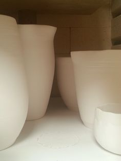 Lynda-anne Raubenheimer - my porcelain vessels the way I like them most