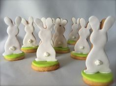 bunny cookies! Standing up and looking at a focal point. Cookie cutter circle and bunny shapes with sugar cookies