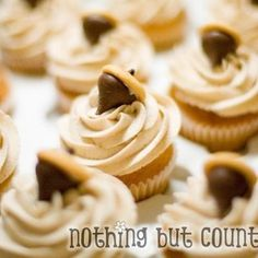 Fall Pumpkin Spice Cupcakes Edible Thanksgiving Crafts