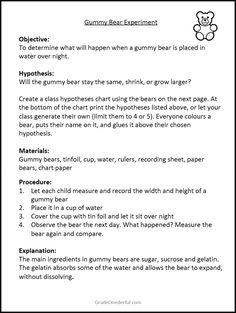 A gummy bear experiment for students. Includes 3 free sheets with directions and recording sheets. Bonus: A booklet of bear poems! - Kids education and learning acts Gummy Bear Science Project, Gummy Bear Experiment, 3rd Grade Science Experiments, Candy Experiments, Science Fair Projects Boards, Science Lessons, Teaching Science, Science For Kids, Science Activities