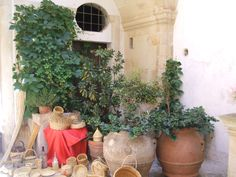 nice corner in a aristocratic palace courtyard Country Living, Palace, Corner, Italy, Traditional, Vacation, Nice, Plants, Country Life