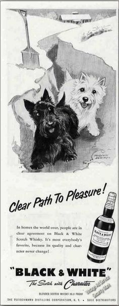 Vintage Advertising of Black & White Scotch