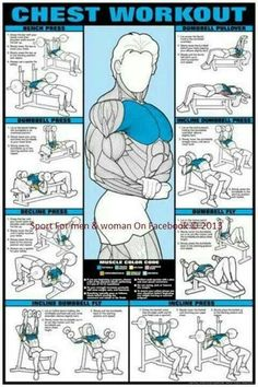 the Full guide Chest workout http://www.be-warrior.us/
