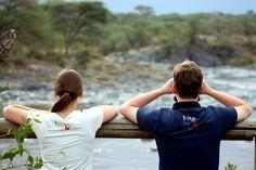 Kipepeo- Shirts in der Serengeti, Tanzania.