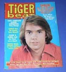 Tiger Beat - Wow I'm sure I had this magazine at one time.