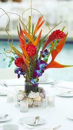 If you love tropical flowers, the Bahamas may be the perfect location for your big day. This centrepiece uses birds of paradise! Perfect for a beach wedding Tropical Centerpieces, Flower Centerpieces, Wedding Centerpieces, Wedding Table, Wedding Decorations, Table Decorations, Centerpiece Ideas, Wedding Ideas, Decor Wedding