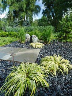herbe-japonaise-gravier-ardoise-aménagement-jardin