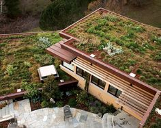 Green Roofs    Green roofs have taken off in the past few years. Ed Snodgrass—green roof expert—suggests that gardeners considering a green roof should start with greening the topper of a doghouse or birdhouse.     As for plant choices, Snodgrass suggests low-growing hardy sedums and other hardy succulents—with color accents coming from perennials like phlox or dianthus and small bulbs such as muscari and crocus.