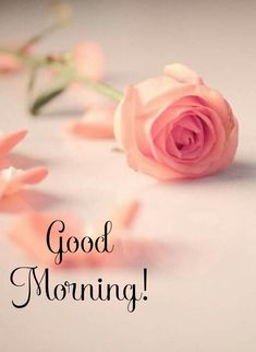 Good Morning Wishes Friends, Good Morning Life Quotes, Good Morning Happy Sunday, Good Morning Texts, Good Morning Picture, Good Morning Messages, Good Morning Greetings, Good Morning Good Night, Good Morning Beautiful Pictures