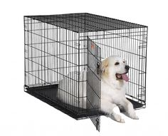 """Pet Supplies X Large Single Door Folding Pet Crate. Looking for """"Pet Supplies X Large Single Door Folding Pet Crate""""? Compare prices from the top online pet supply retailers. Save lots of money when buying supplies for your pets. Extra Large Dog Crate, Large Dogs, Xxxl Dog Crate, Dog Crate Sizes, Wire Dog Crates, Pet Crates, Airline Pet Carrier"""